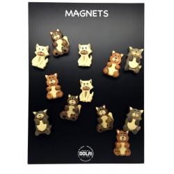 24 Magnete mit Katze + Aufsteller