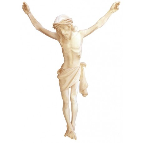 Christuskörper mit Dornenkrone - Natur
