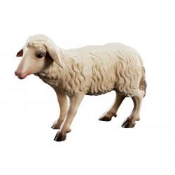 Stehendes Schaf aus Ahornholz geschnitzt, diese Holzschnitzerei ist eine edle Südtiroler Holzfigur - Ölfarben lasiert