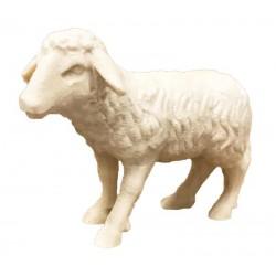 Stehendes Schaf aus Ahornholz geschnitzt, diese Holzschnitzerei ist eine edle Südtiroler Holzfigur - Naturbelassen