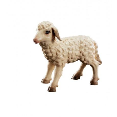 Nativity set wooden lamb - color