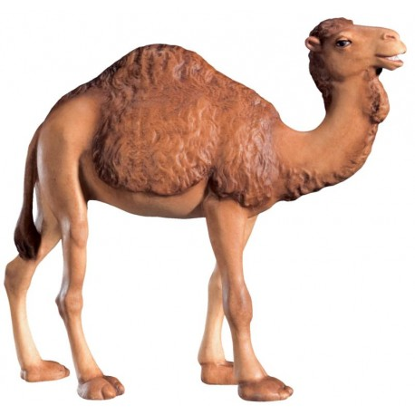 Camel carving in maple wood - color