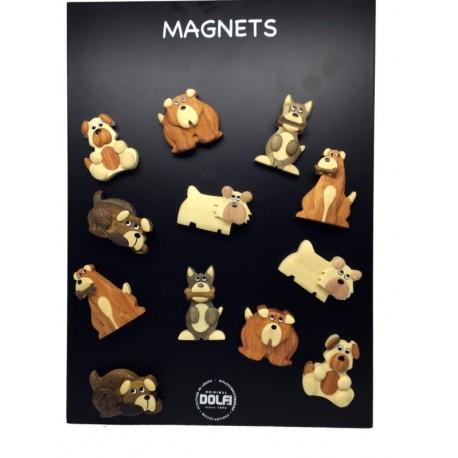 24 Holz-Magnete mit Hund