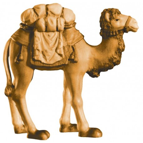 Camel with saddle in wood - stained 3 col.