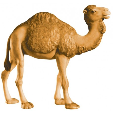 Camel carved in maple wood - stained 3 col.