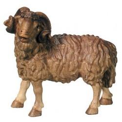 Montone al seguito dei pastori del presepe