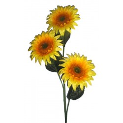 The Sunflower in wood