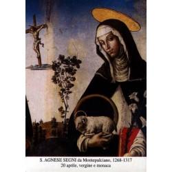 """Sant 'Agnese Segni di Montepulciano """"Virgin"""""""