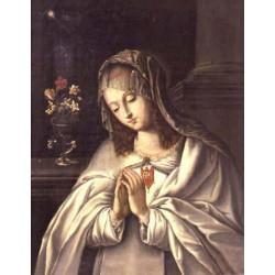 """Allerseligsten Jungfrau Maria der Barmherzigkeit """""""