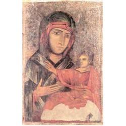 "Beata Vergine Maria di San Luca"""""