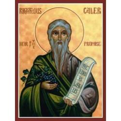 """Caleb""""Capitano del re Davide"""""""