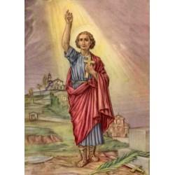 "San Dalmazio (Dalmas) von Pavia ""Martyr"""