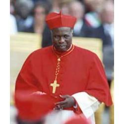 """Cardinal Gabriel Zubeir Wako """"cardinal electors"""""""