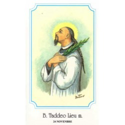 """Saint Thaddeus Liu Ruiting """"Martyr"""""""