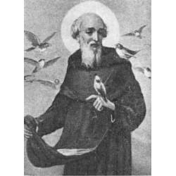 """Beato Ubaldo da Borgo San Sepolcro (Ubaldo Adimari)""""Frate Se"""