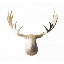 Head of Elk in Linden wood - Dolfi Gift Shop Near Me - Made in Italy