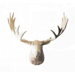 Head of Elk in wood