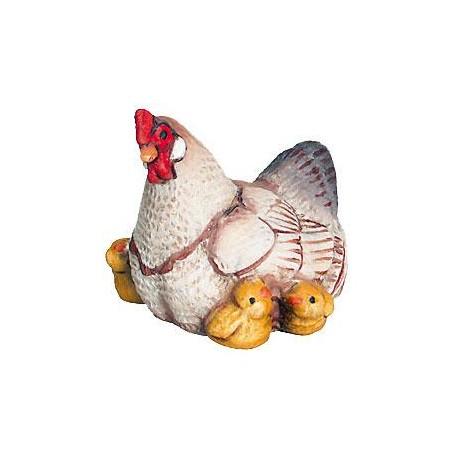 Mamma chioccia accoglie tra le ali i suoi pulcini