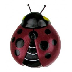 Magnet - the Cockchafer - Dolfi Cute Fridge Magnets - Made in Italy