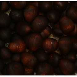 12 fruits coconut