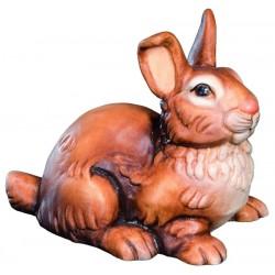 Il nostro coniglio ha lunghe orecchie e muso spiritoso