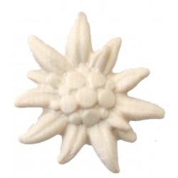 Stella Alpina finemente scolpita in legno pregiato - Dolfi fiori scolpiti in legno, Ortisei