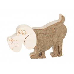 Dog in bark wood